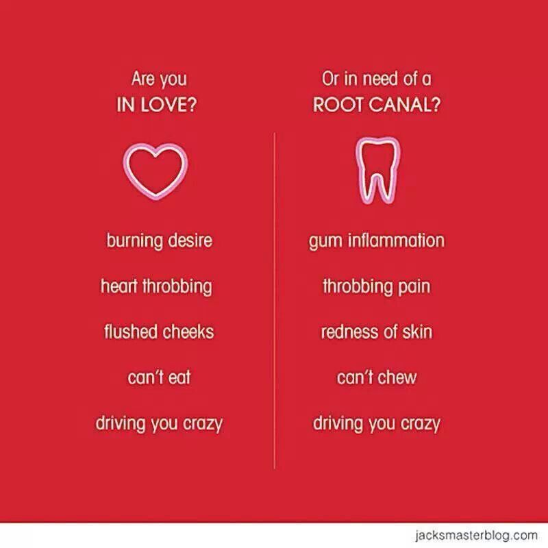 In love or need a root canal dental dental humor