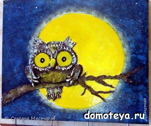 Вот такая мистическая сова в дымке лунной ночью. фото 1