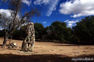 Fonni - menhir Santu Mikeli