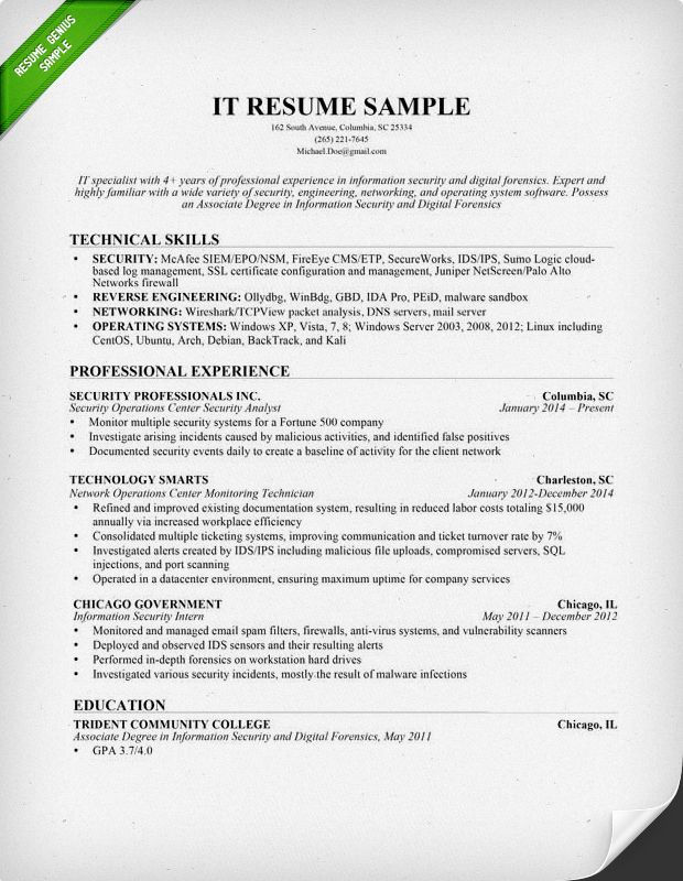 Information Technology IT Resume Sample geography Resume skills