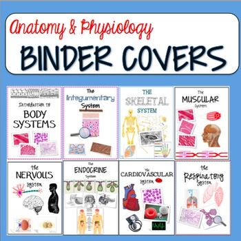 Anatomy and Physiology Binder Covers  Science for Secondary Grades Biology Chemistry Physics