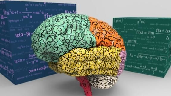 Los secretos del cerebro para todos los públicos
