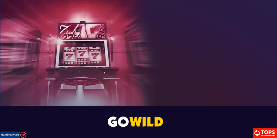Sports gambling companies