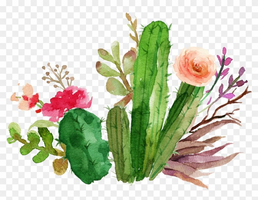 Wedding Invitation Paper Flower Textile Succulent Plant Watercolor Cactus And Flower 824236 Watercolor Cactus Watercolor Flowers Cactus Art