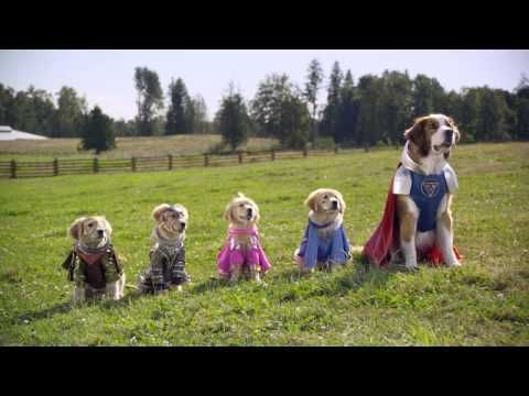 Watch The Buddies Learn How To Use Their Super Powers Super