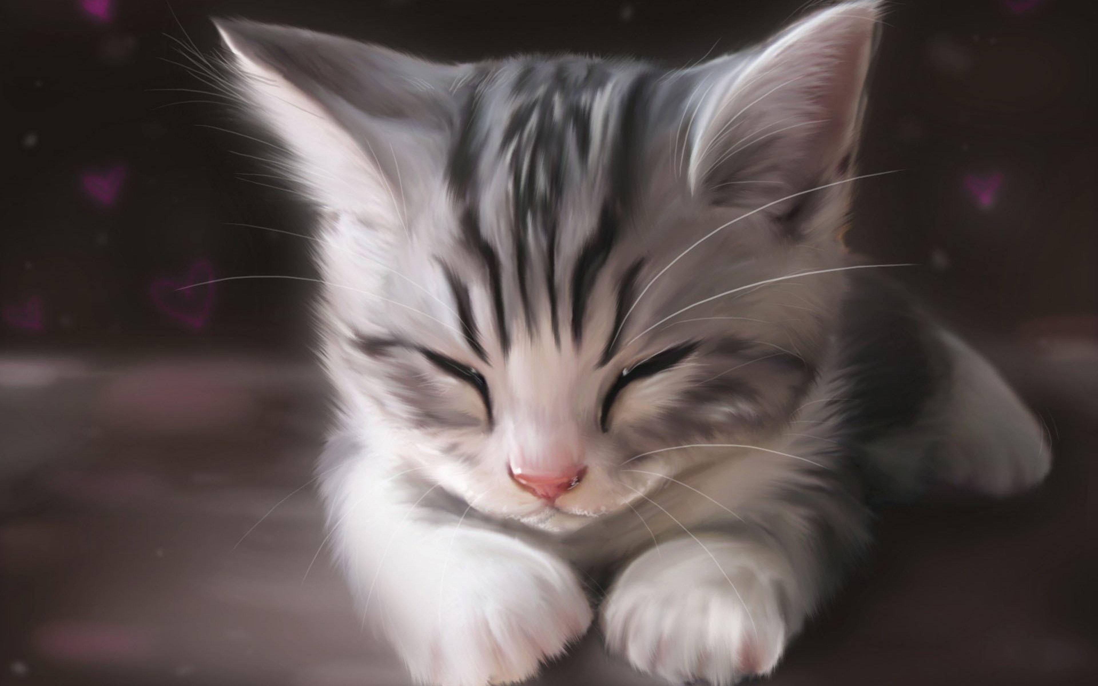 Gray Cat Eyes 4k Ultra Hd Wallpaper Cats Grey Cats Pets Cats