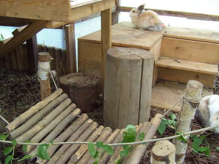 Bilder eurer kaninchenställe und außengehege kaninchen