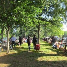 the flea market on a lawn -- it is pleasant