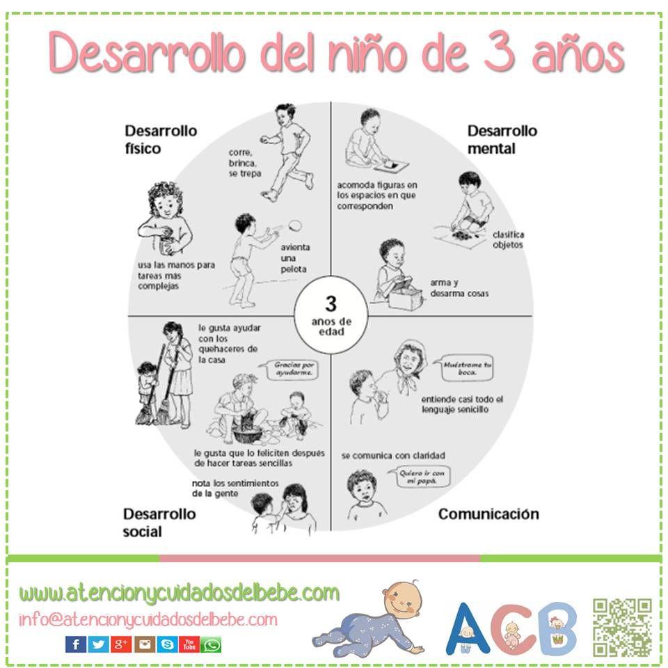 Desarrollo Del Niño De 3 Años Atencionycuidadosdelbebe Desarrolloinfantil Estimulación Temprana Desarrollo Del Niño Educacion Infantil