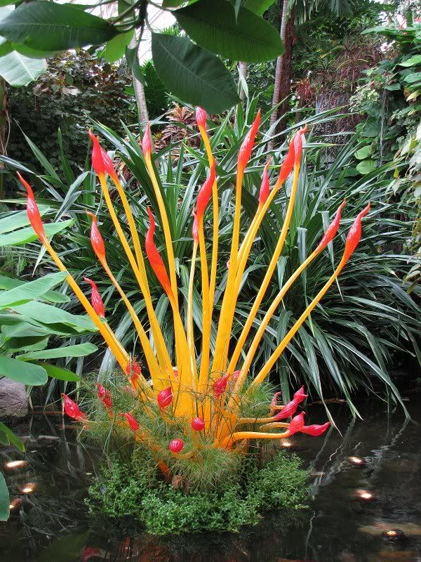Chilhuly at Franklin Conservatory Glass art, Blown glass