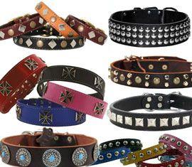 Dog Collar, Dog Collars, Designer Dog Collars, Studded, Studs, Conchos