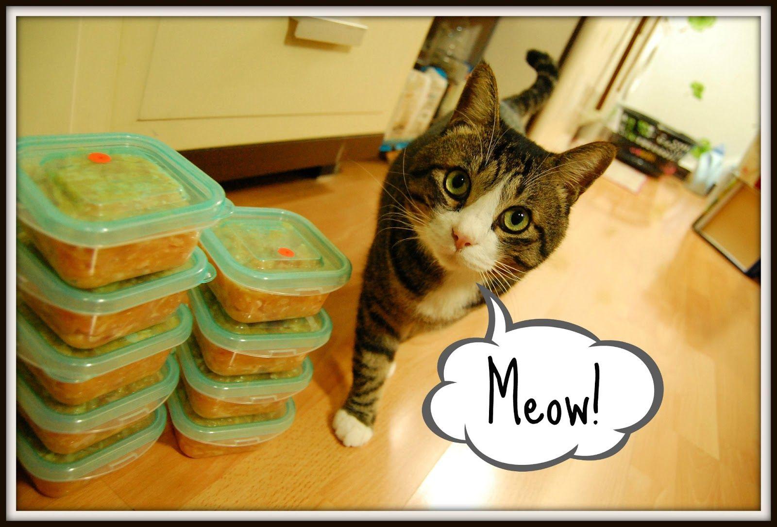 Sautéed Happy Family: Homemade Cat Food Recipe