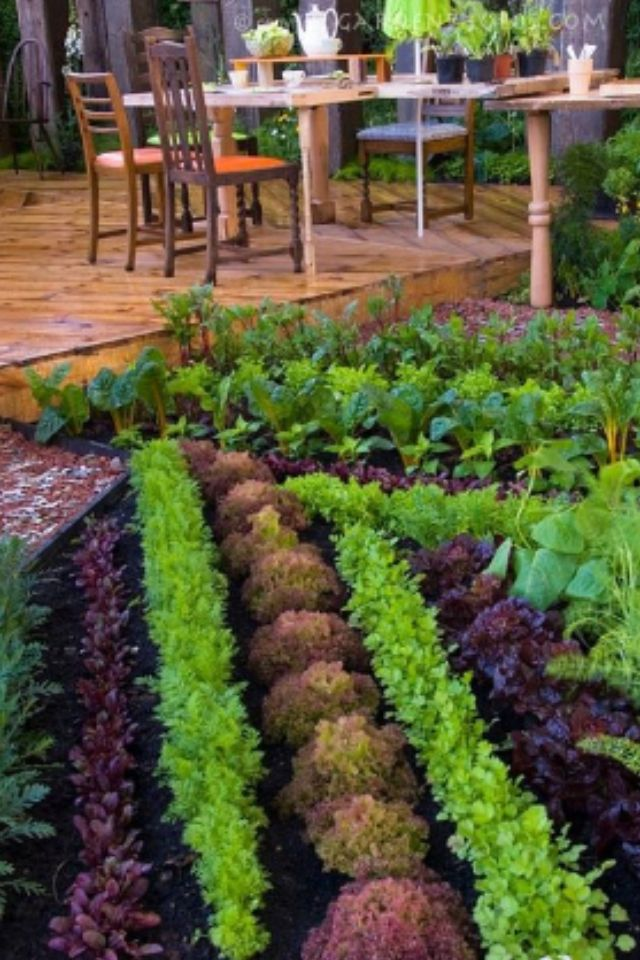 Attrayant Pinterest Garden   Pinterest Ready Garden Pinterest Garden Ideas