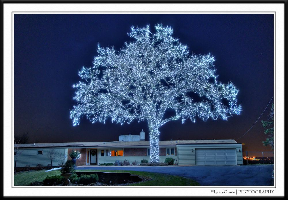 My former neighbor's amazing Christmas lights! West Bloomington, MN