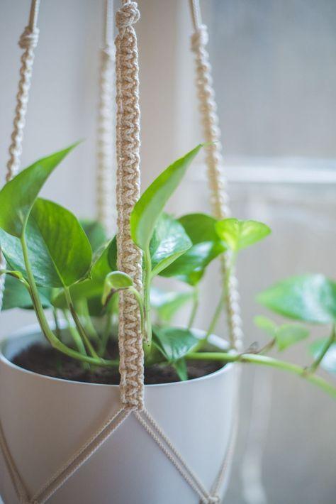 Easy Home Diy Macrame Plant Hanger Tutorial Macrame Pinterest