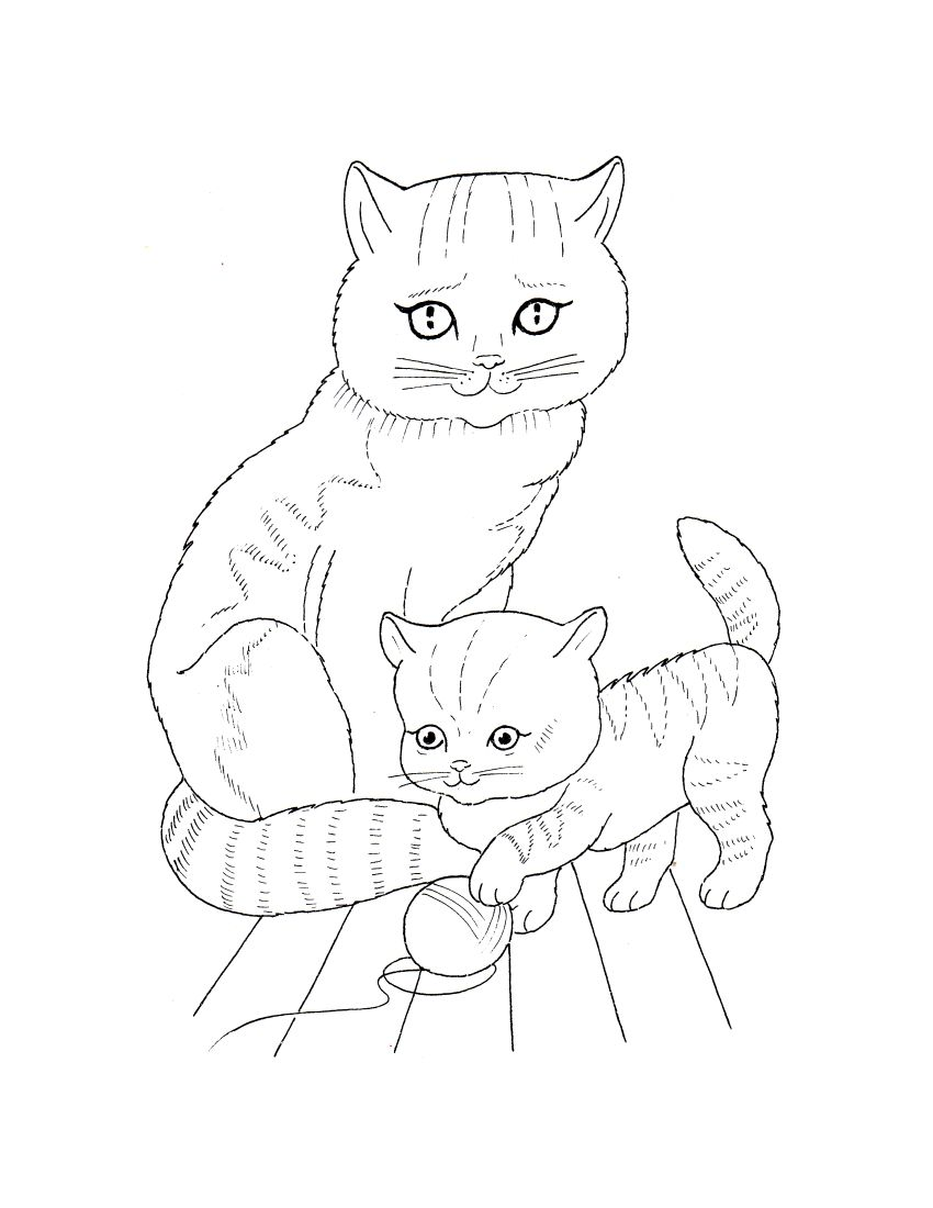 Cat Color Pages Printable Download Mama Kitty Coloring Page