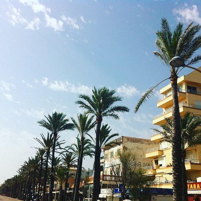 Werbung Palma de Mallorca Airport Alle Infos zum