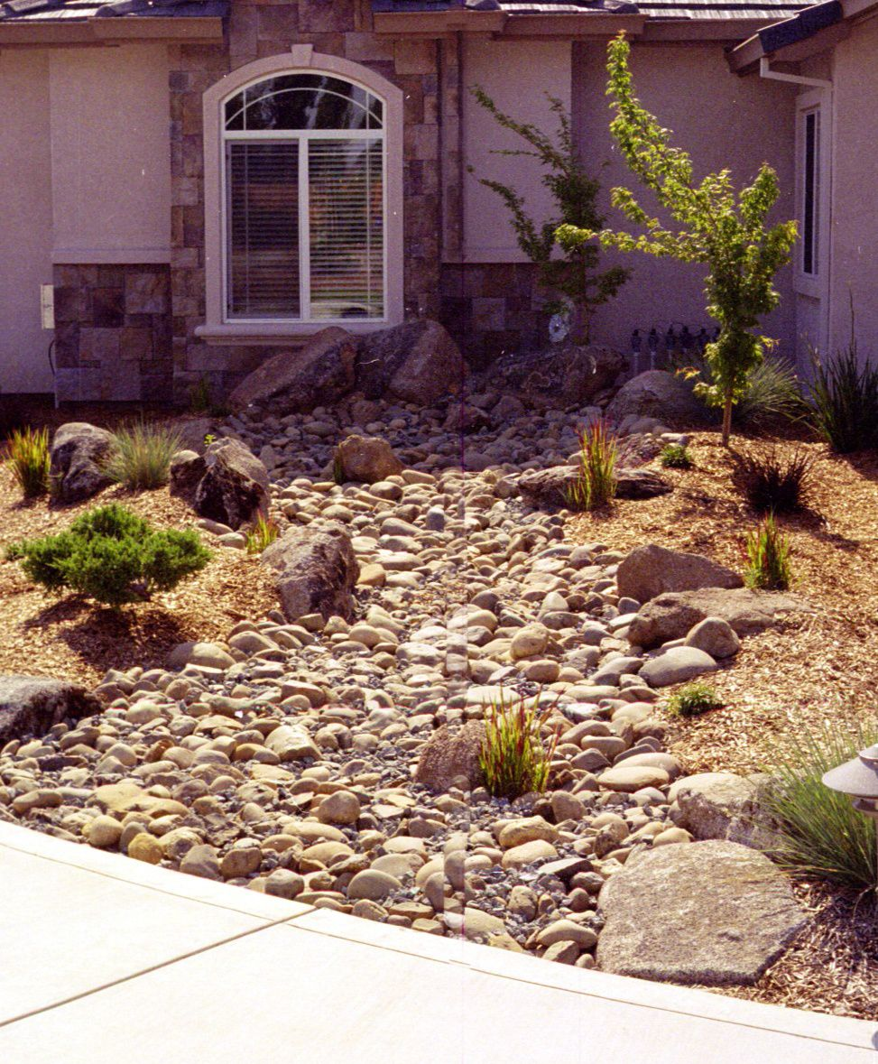 Dry Stream Bed Perfect For Using Under Roof Downspouts To Retain Runoff Dry Riverbed Landscaping Outdoor Gardens Evergreen Landscape