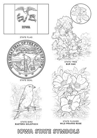 Iowa State Symbols Coloring Page State Symbols Bird Coloring