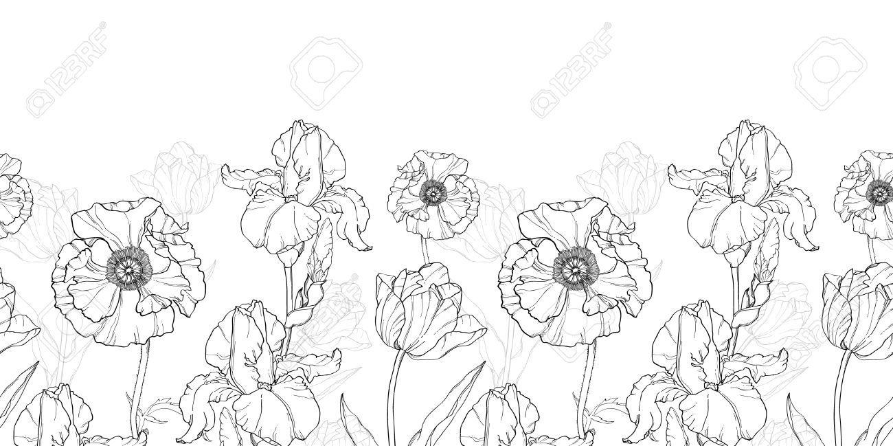 Vintage Black White Flowers Drawing Horizontal Border Seamless