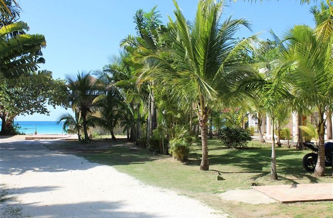 Zanzi Beach Resort In Negril Jamaica