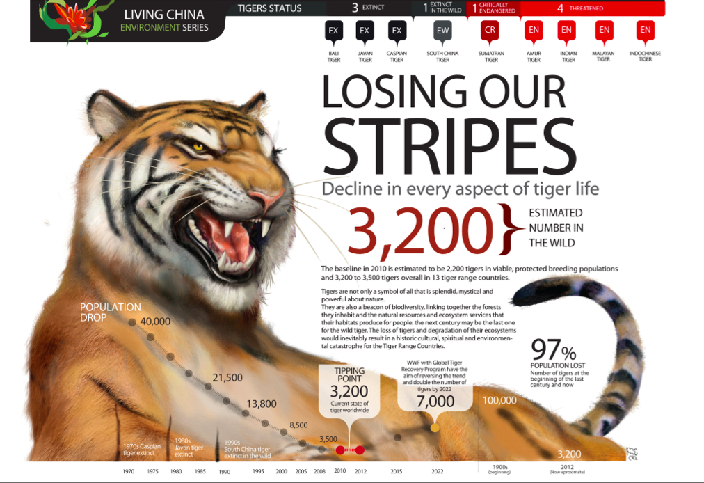 Tigers in decline support WWF Tigers programs http//wwf