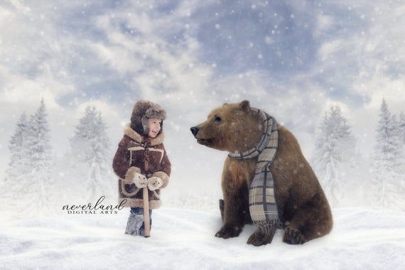Bear Wearing a Scarf / Winter Background for Photographers / Christmas Backdrop for Photography / Digital Downloads & Overlays #backdropsforphotographs