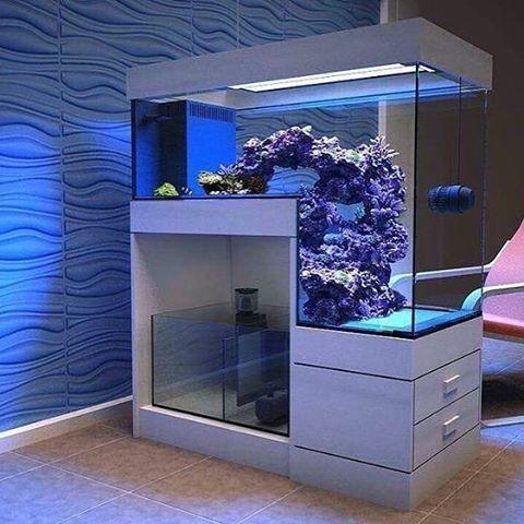Acuario Aquarium Diy Aquarium Aquarium Design