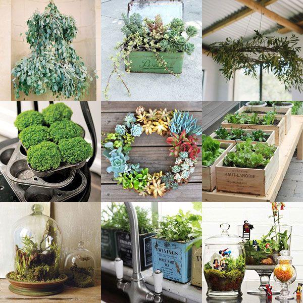 Tips For Indoor Gardening: Beautiful Moodboard Of Indoor Plant Ideas Via @Mollie
