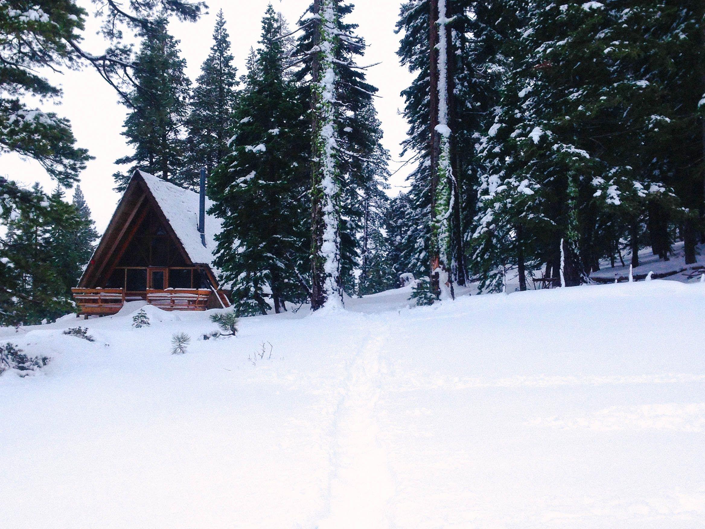 road bike rentals south lake tahoe