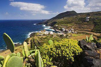 Ambiente:Pantelleria tra le sei icone mondiali minacciate
