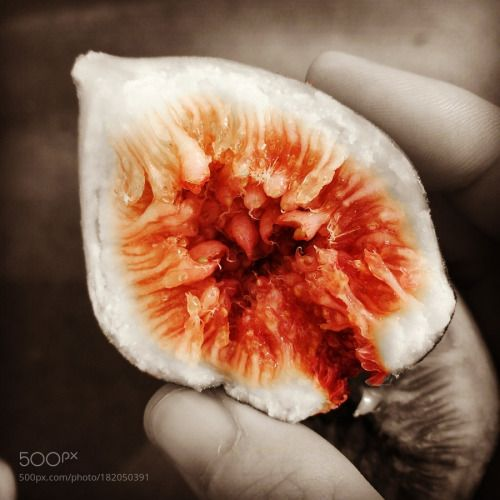 fig无花果 by 3012191961  IFTTT 500px