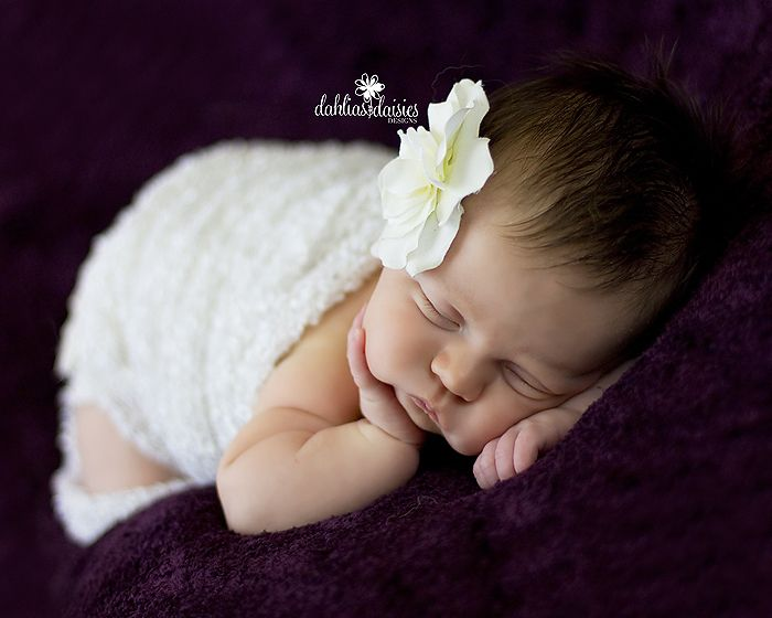 1 month old newborn photography dahlias and daisies designs photography by stephanie sifuentes