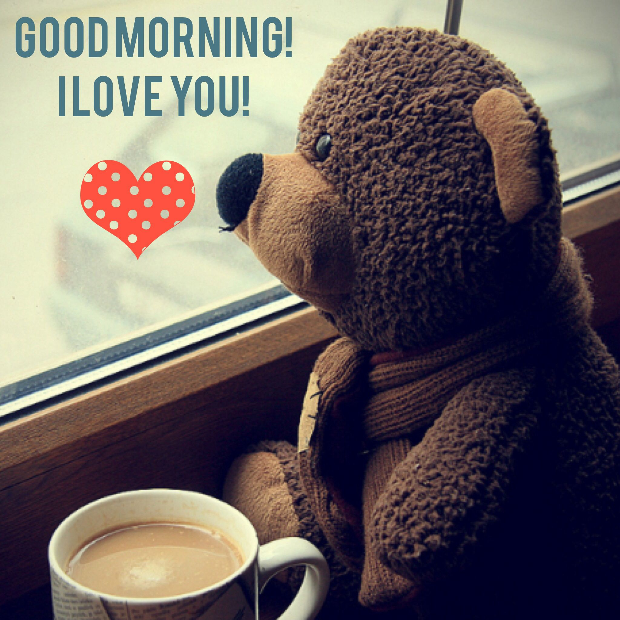 Good Morning I Love You Morning Memes Good Morning Quotes Good Morning