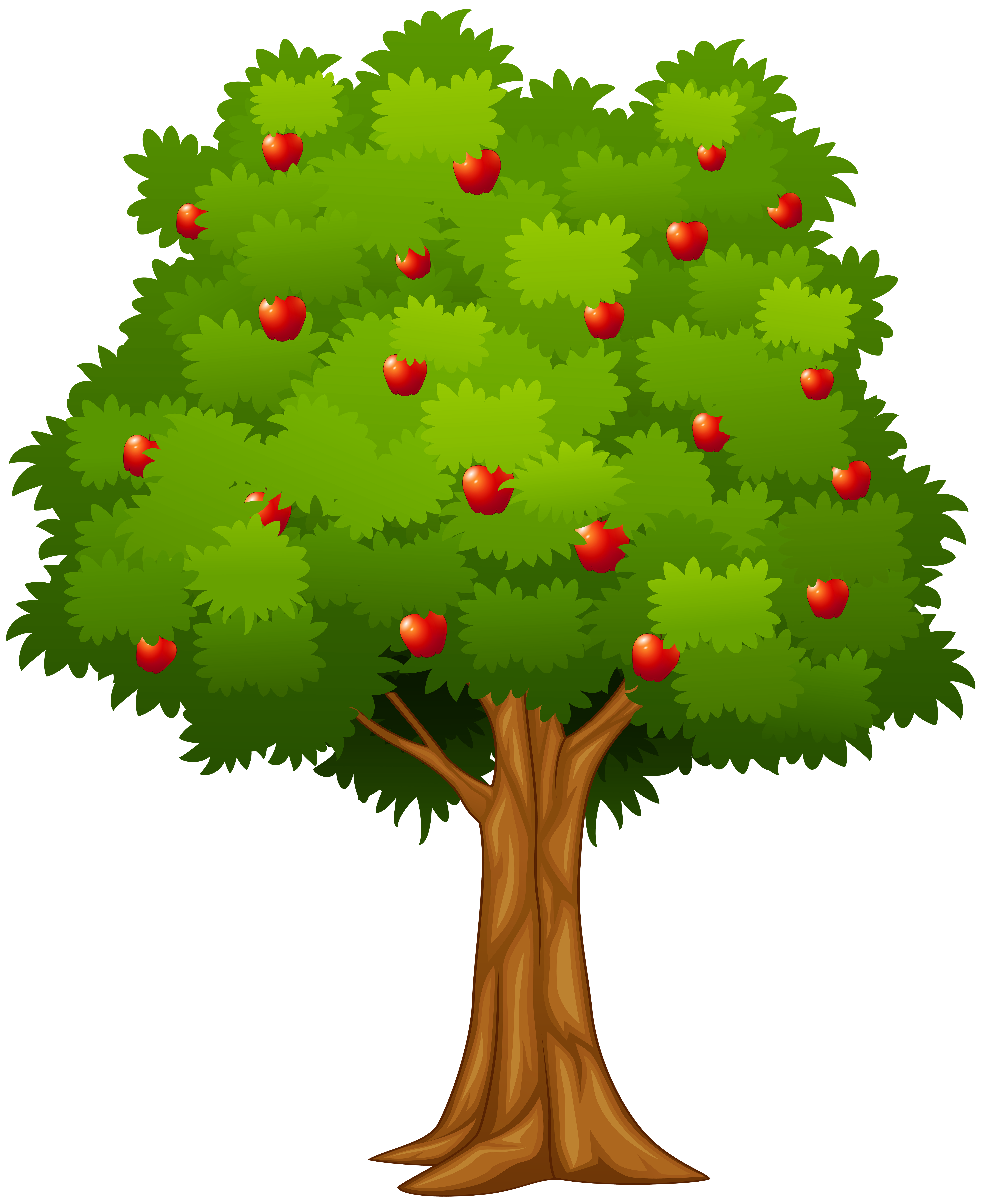 Apple Tree Png Clip Art Image Gallery Yopriceville High Quality Images And Transparent Png Free Clipart Apple Clip Art Apple Tree Fruit Coloring Pages
