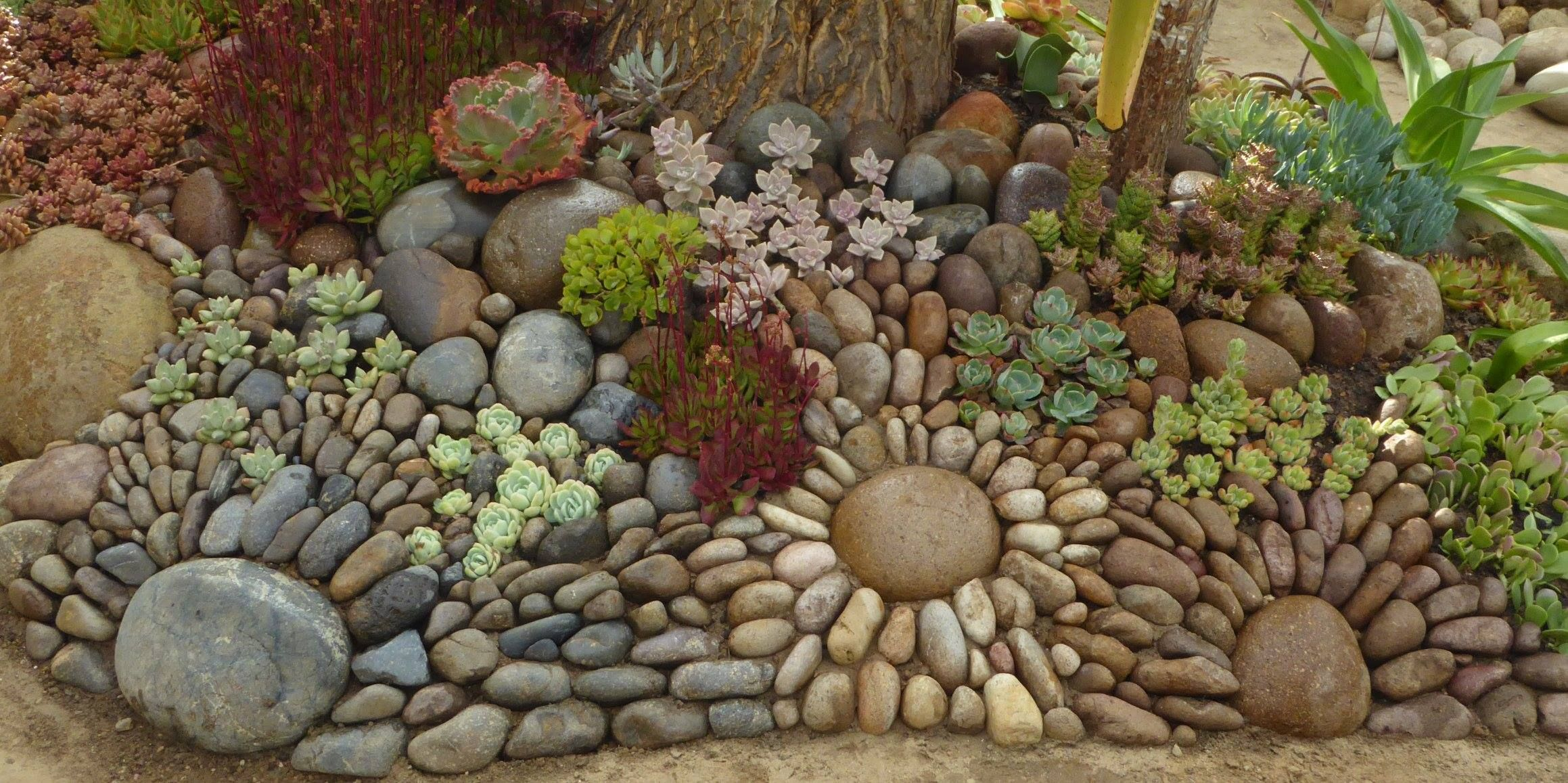 What a lovely idea for a garden hill! | How Fun Is This ...