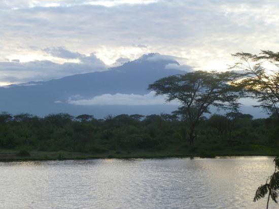 Voyager Ziwani, Tsavo West: Mount Kilimanjaro in 2020