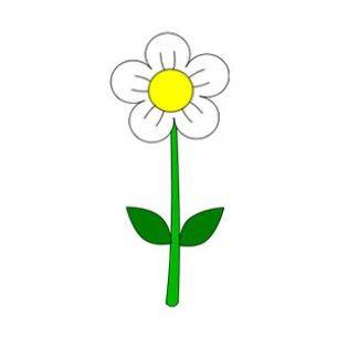 Gambar Bunga Kartun Sederhana Putih Gambar Kartun Lukisan Bunga