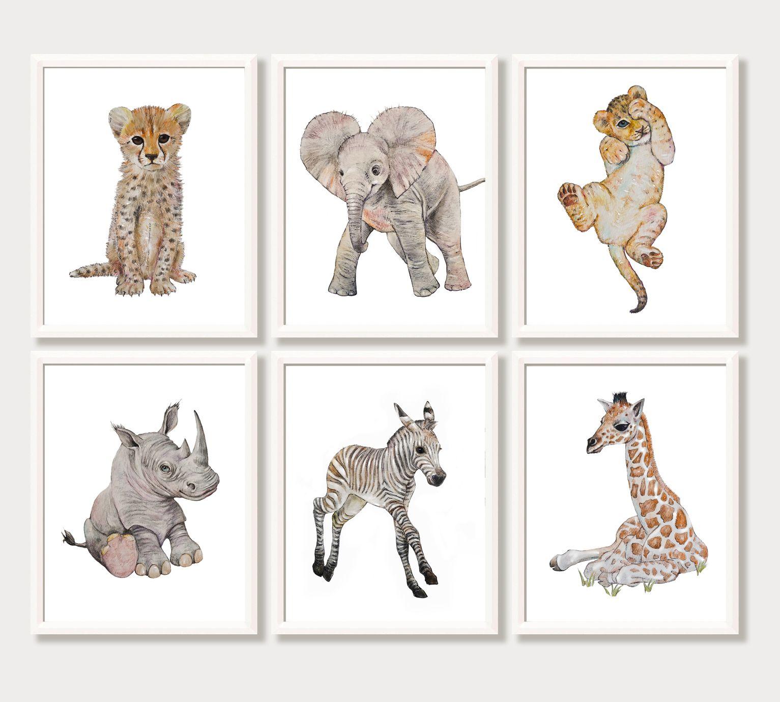 Safari Animals Nursery Wall Prints,boys nursery wall prints,Safari Decor,