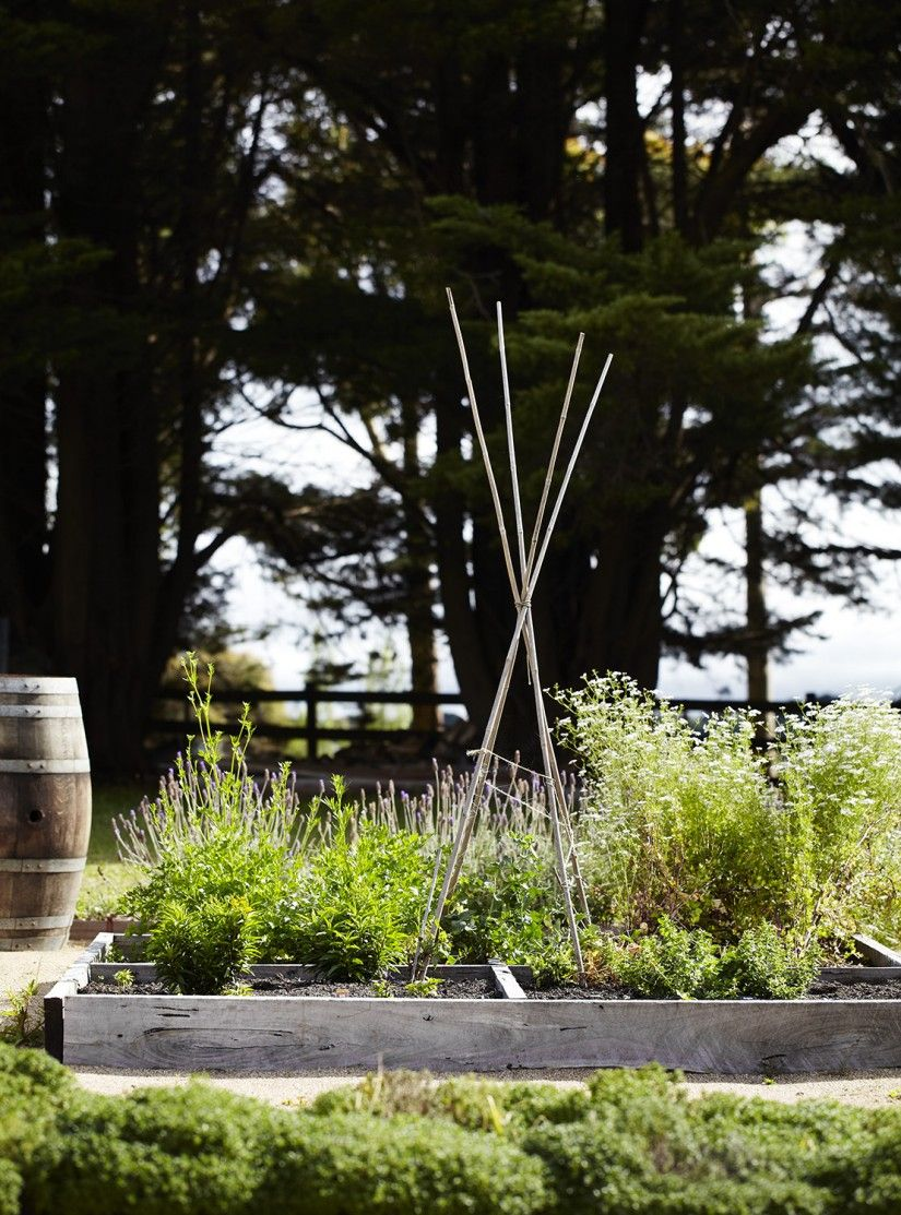 a country chic retreat in australia the style files - Country Vegetable Garden Ideas