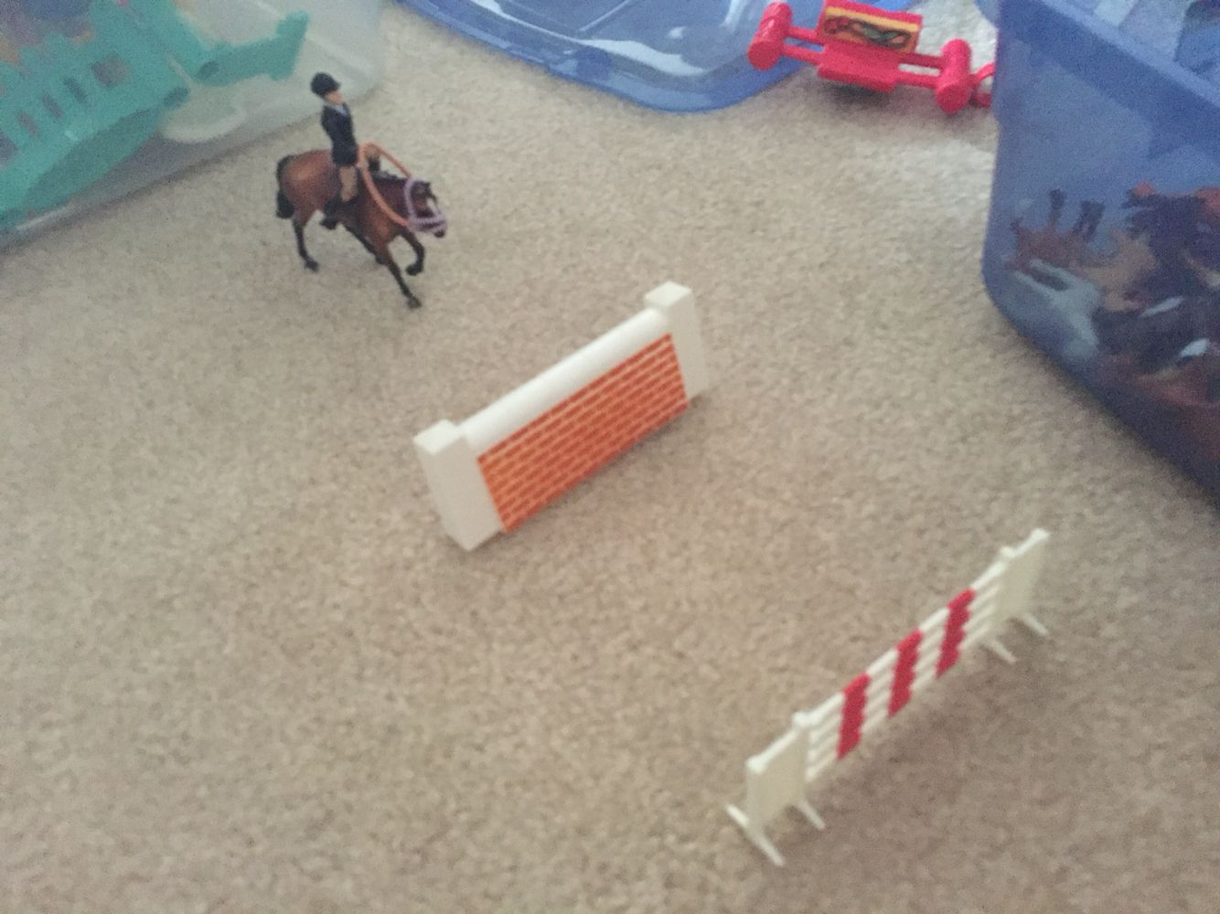 Lucky and Ryleigh are aproching the jumps