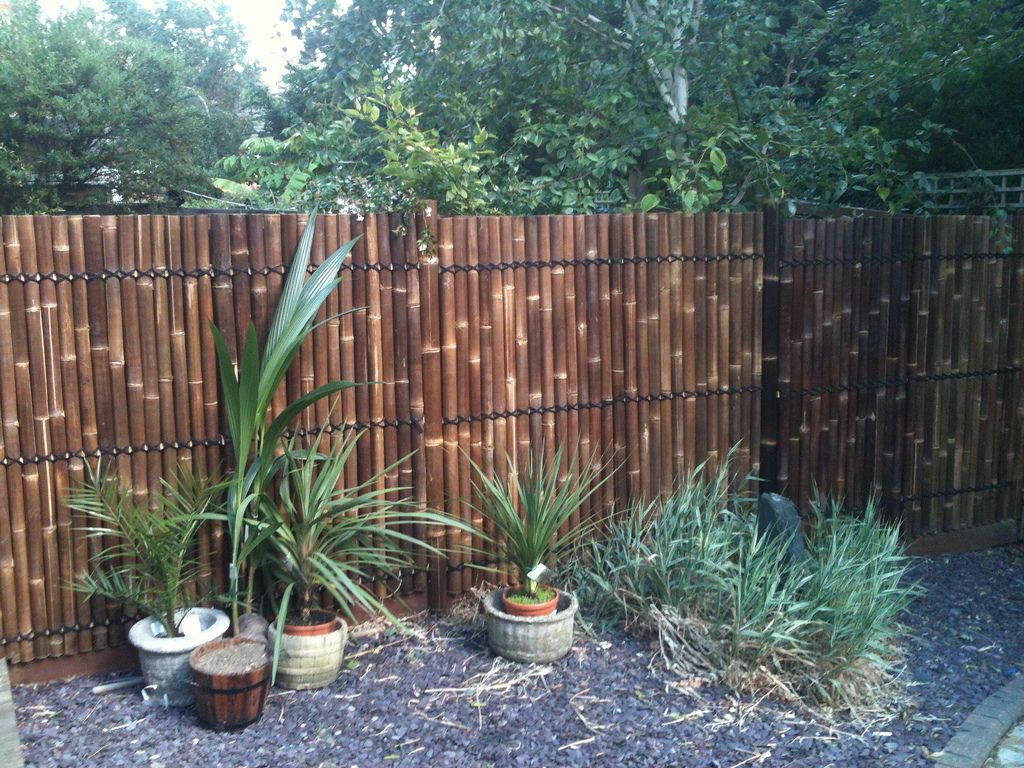 Best Bamboo Fencing For Garden And Outdoor Design: Reed Fencing With Bamboo Fencing  For Backyard Fence Ideas And Planters Also Gravels With Landscape ...