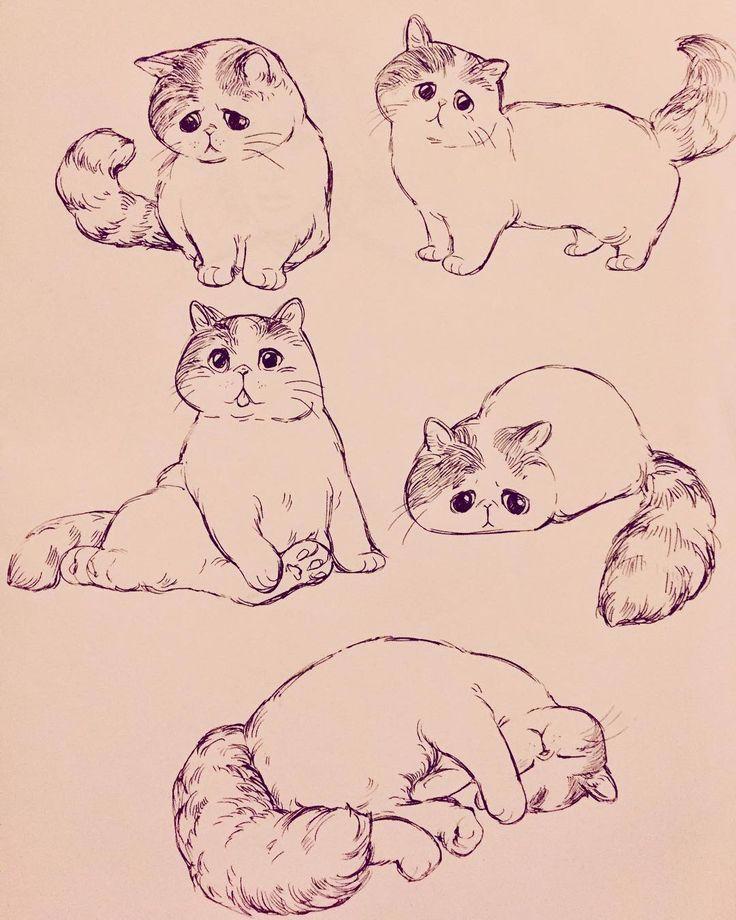 Fluffy puffy #art #cats #sketch #sketchbook, #Art #Cats - Fluffy puffy #art #cats #sketch #sketchbook, #Art #Cats    Fluffy puffy #art #cats #sketch #sketchbook, #Art #Cats