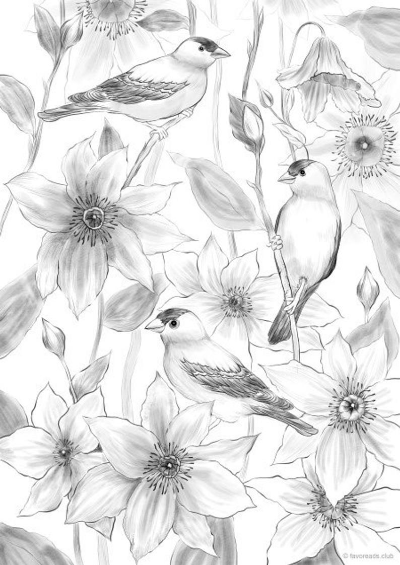 Pin On Flower Coloring Pages [ 1122 x 794 Pixel ]