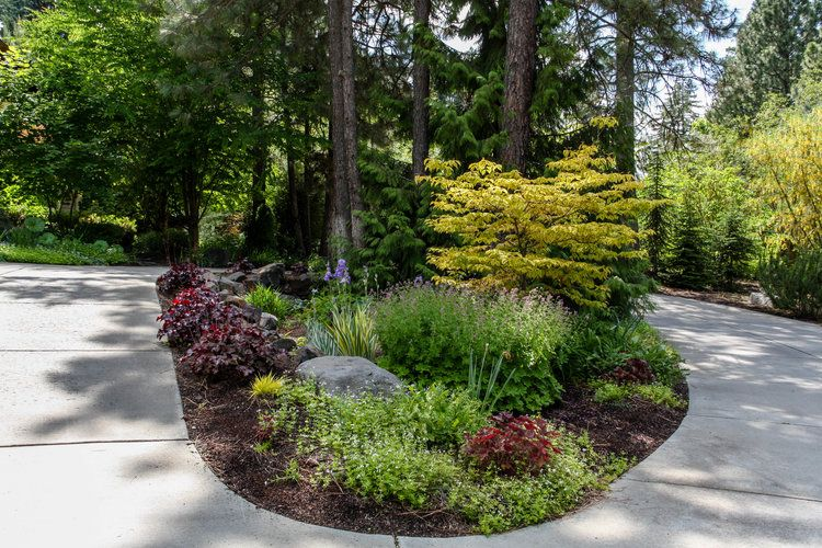 Cottage Garden Driveway Island Landscaping Driveway Landscaping