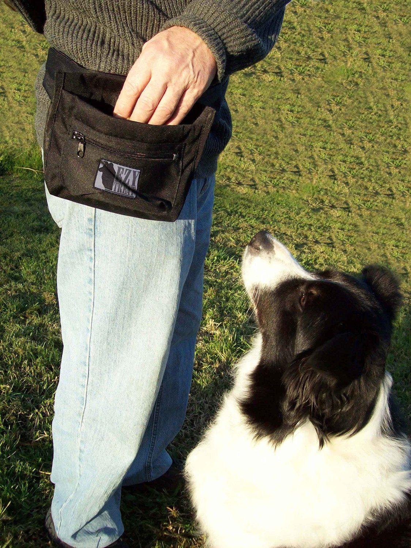 Amazon Com Ezy Treat Top Quality Dog Treat Bag For Reward