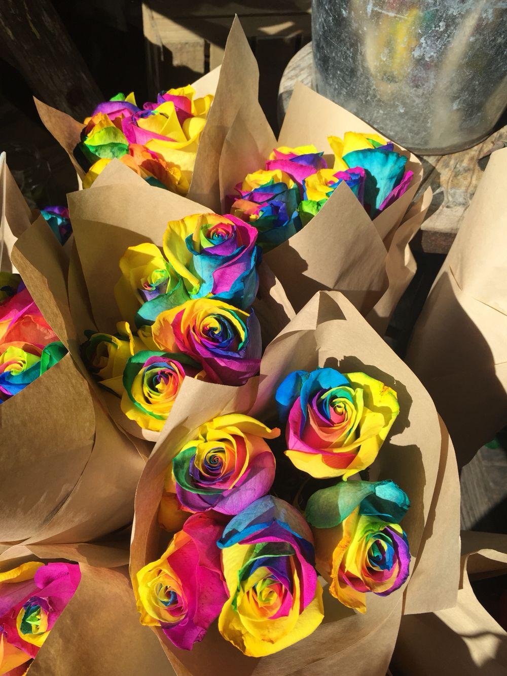 Beautiful Roses Rainbow Roses Flowers Pretty Beautiful Bouquet