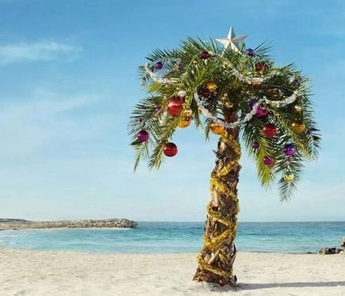 Palm Tree Beach: Decorated Palm Tree #christmasinjuly