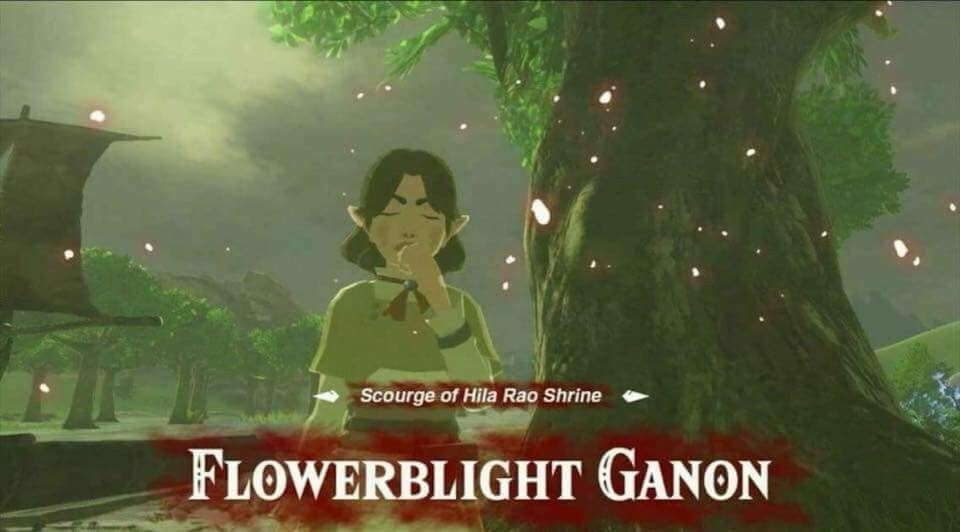 From Legend Of Zelda Memes That Woman Was Extremely Annoying Legend Of Zelda Memes Zelda Memes Zelda Funny