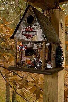 Wonder if it attracts biker chicks?